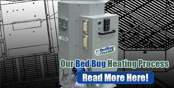 Bed Bug bites Staten Island, Bed Bug spray Staten Island, hypoallergenic Bed Bug treatments Staten Island